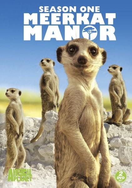 Meerkat Manor movie font